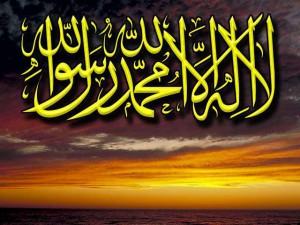 Ərəb dili